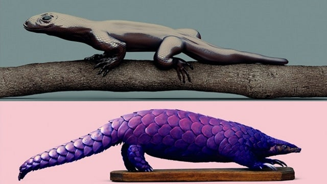 A Weird and Wonderful Gallery of Genetically Modified Animals of the Future