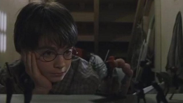 The Lost Harry Potter Character You Never Got to Meet
