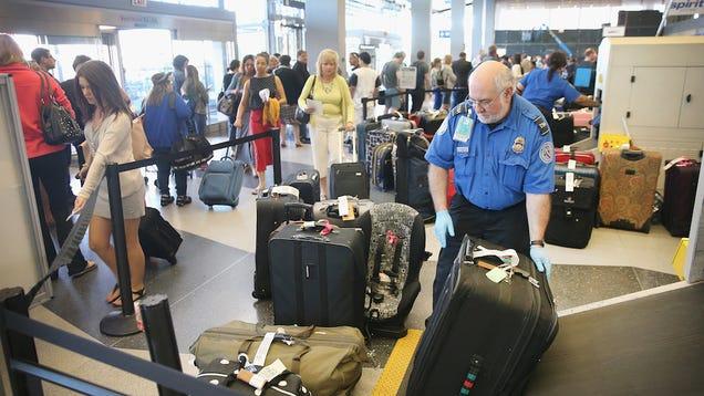 TSA Finds Guns, Ammo, 58 Bricks of Pot in Woman's Luggage