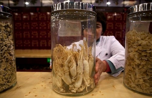 Czechs Would Let North Korea Pay Back Debt in Ginseng Root