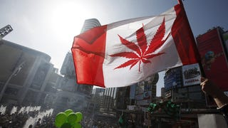 Canadian Feds Don't Like How Medical Marijuana Is Being Promoted