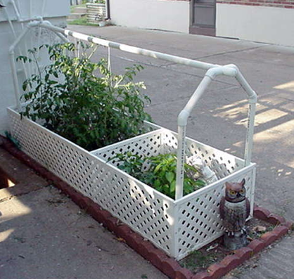 Build a Self-Watering Garden with Recycled Water