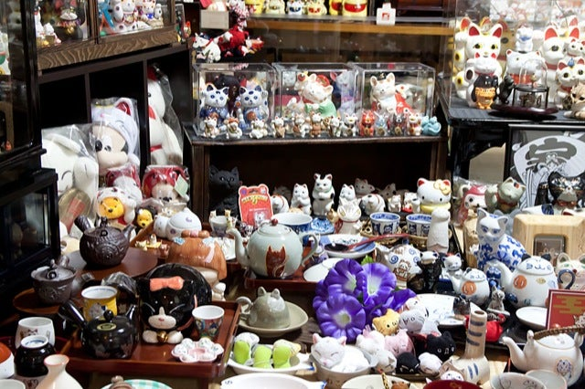 The Story of the Cat Lady with Over 10,000 Cat Items
