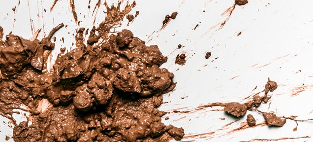 Science S Dirty Secret All You Need To Know About Fecal