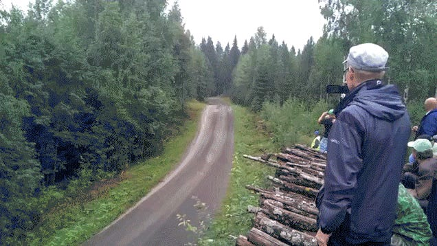 Rally Car Brutally Attacks Innocent Logs