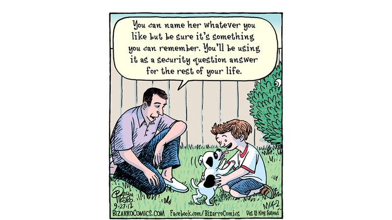 Remember, You're Not Only Naming Your Pet, You're Also Securing Your Digital Future