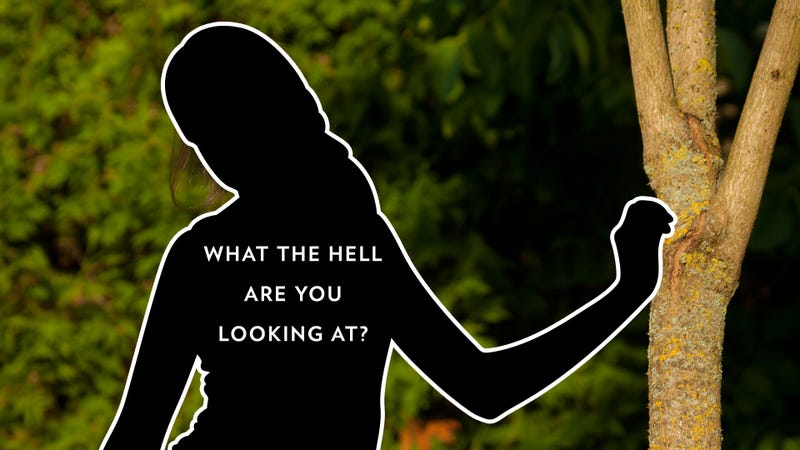 Batshit Ridiculous Modesty Website Reminds You That Women Just Can't Win