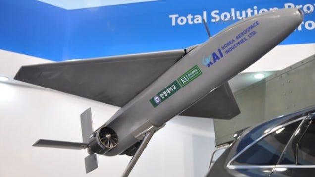 South Korea's Kamikaze UAV Could Scare the Ojom Out of Kim Jong-un