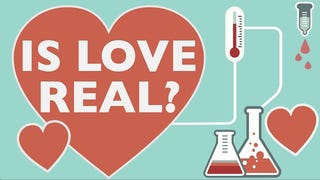 This Video Teaches You All About the Science of Love