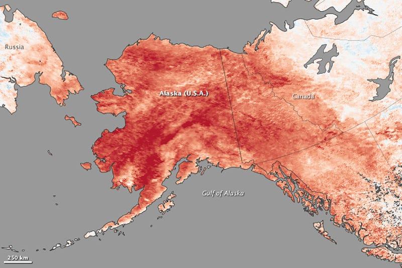 It's so freaking warm in Alaska that roads turned into rivers