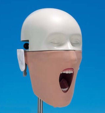 These Silently Screaming Dental Mannequins Are What Nightmares Are Made Of