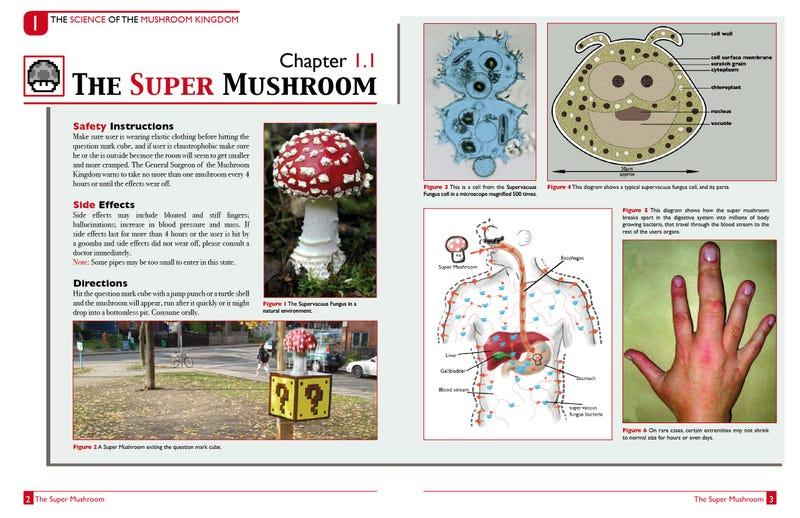 'The Science of the Mushroom Kingdom' Explores Super Flora