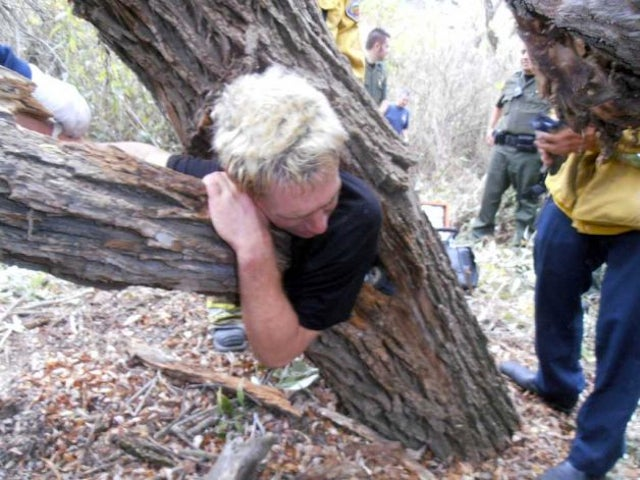 Man Not Named Lee Corso Gets Stuck Inside A Tree