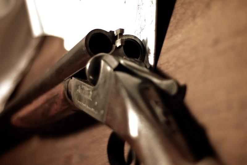 Shooting Gallery Challenge: Heirloom III
