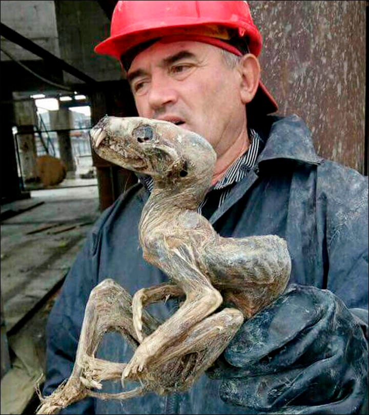 Siberian Miners Definitely Didn't Just Find a Demon Baby
