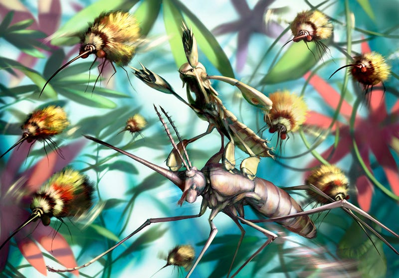 Intense graphic novel about insects is like Dr. Seuss meets Darwin