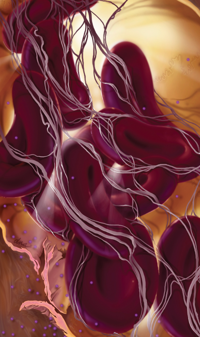 These gorgeous medical illustrations look like scenes from another world