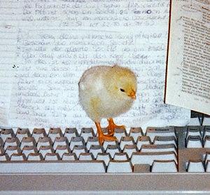 PETA Prank Or Hungry Bird?