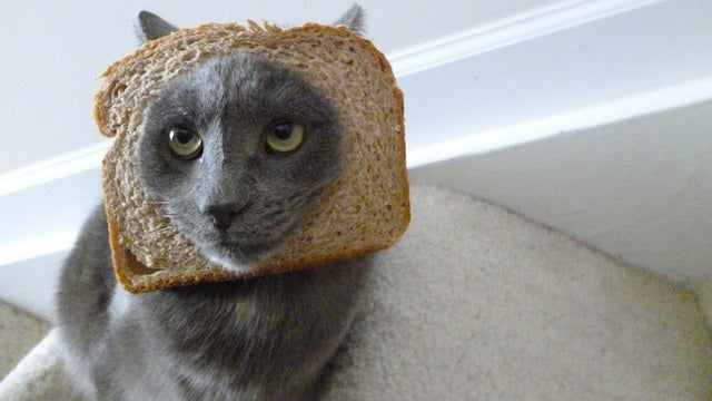 The Best Tweets About Breading, The Weird New Internet Meme