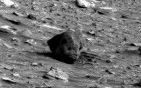 Alien Skull Discovered in NASA Mars Photograph, Dr. Bonkers Says