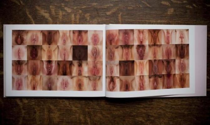 A Whole Book Of Beautiful, Diverse Vaginas (Vulvas!) [NSFW]