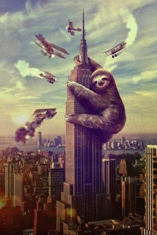 Sloths, The Grandest Creature of All, Are Finally In Animal Crossing