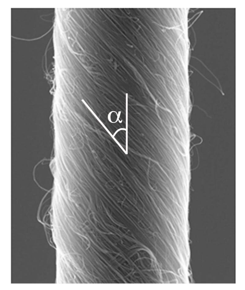 Scientists have used carbon nanotubes to engineer the most powerful artificial muscles ever