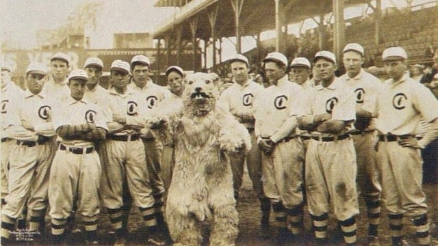 In 1908, The Chicago Cubs' Mascot Was A Terrifying Squirrelbeast