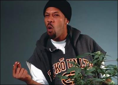 35 Celebrities Who Smoke Pot