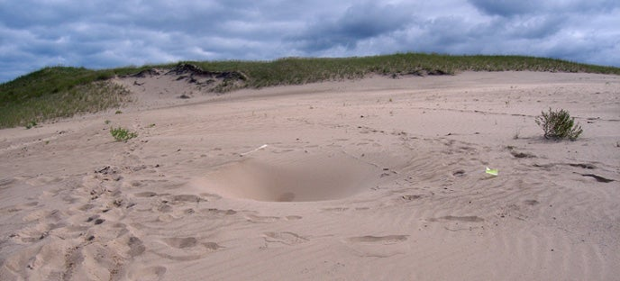 No One Knows Why Deep, Dangerous Holes Are Appearing In This Sand Dune