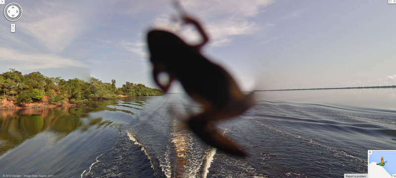 Meet the Wildlife Inadvertently Captured By Google's Street View Cameras