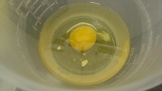 Remove Egg Shells From a Mixing Bowl by Wetting Your Fingers First
