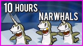 Narwhals, Narwhals, Swimming In the Ocean