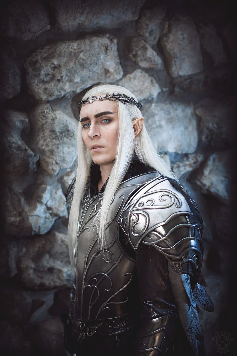 Not Sure If Cosplayer Or Actual Elven King