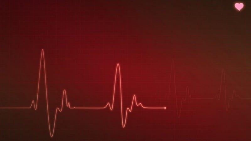 Stem Cells Could Help Heal Broken Hearts
