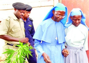 Violent Nuns Busted for Growing Weed