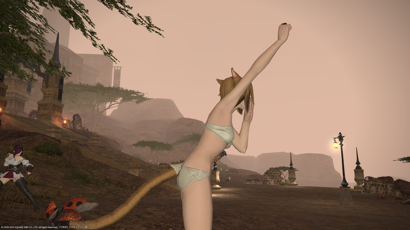 Catgirl Butts In Final Fantasy XIV Not Good Enough For Some Players