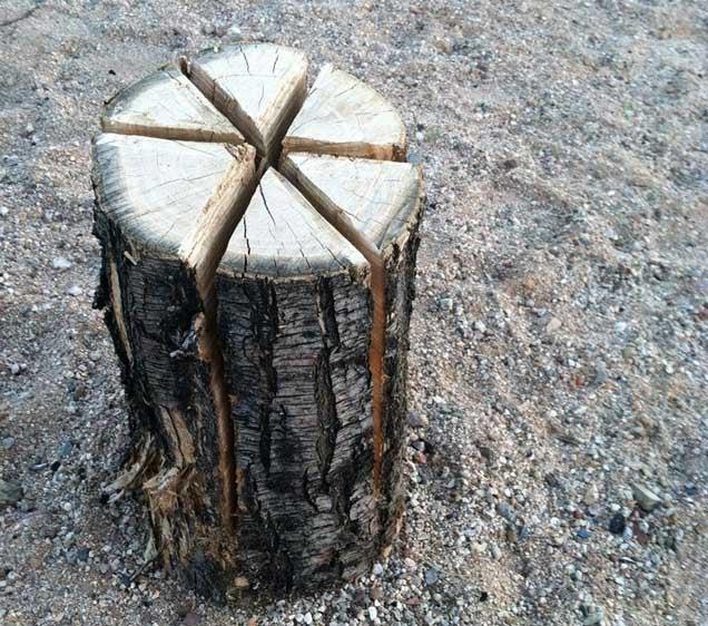 "Make a ""Swedish Torch"" Campfire with a Single Log"