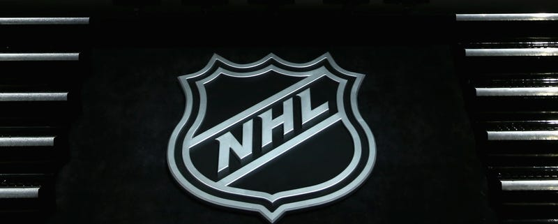 Former NHL Players Sue League Over Concussions
