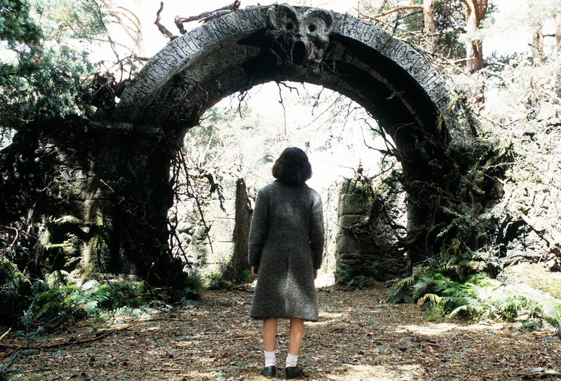 Walk through this portal with me into another world