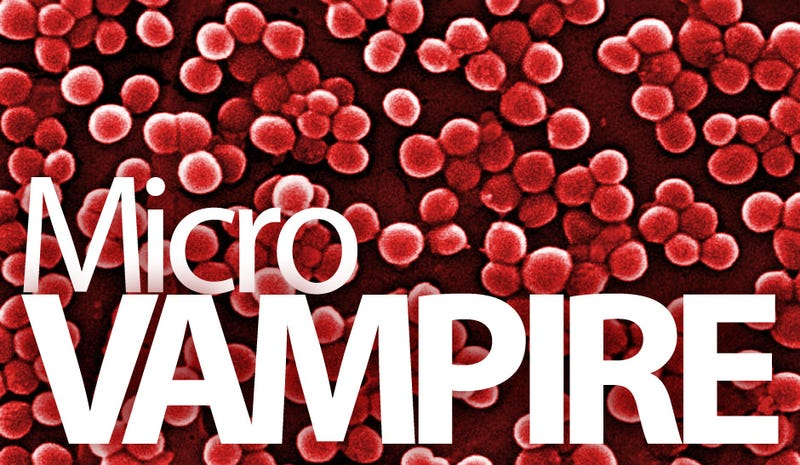 Vampire Microbe Loves Human Blood