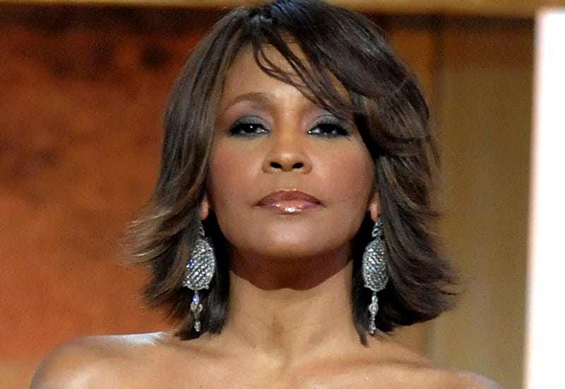 Reality TV Show Starring Whitney Houston's Family Announced Three Months After Singer's Death