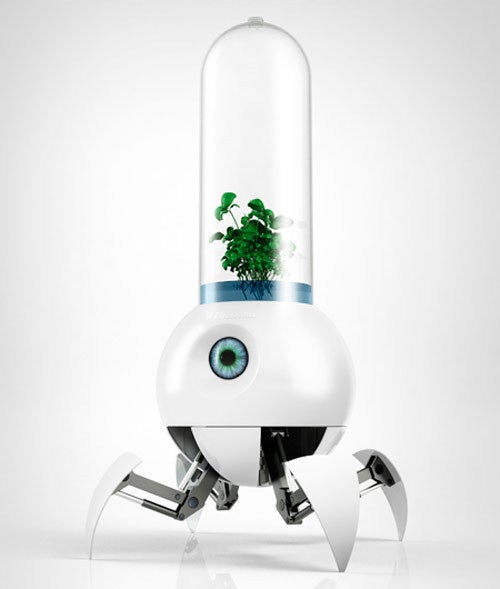 This Little Guy Might Grow Your Tomatoes on Mars
