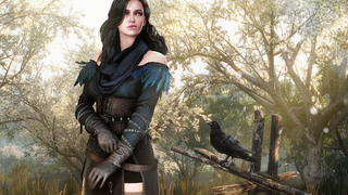 <i>The Witcher 3</i>'s Free DLC So Far: Monsters, Beards, And A Pretty Dress