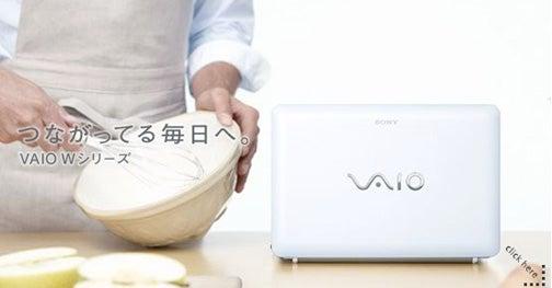 Sony's Got an Honest-to-Goodness Vaio Netbook