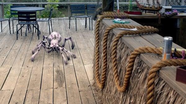 Arachnoquake Pictures