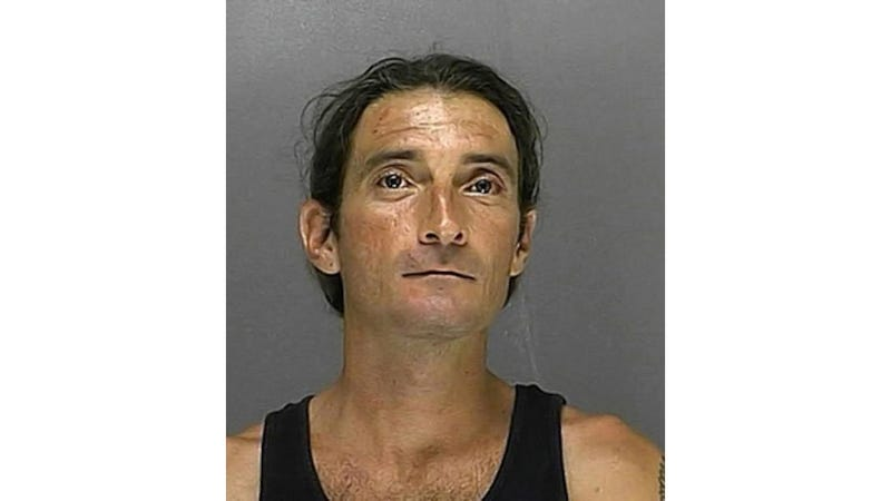 Florida Man Stripped Naked, Robbed While on First Date With Tree