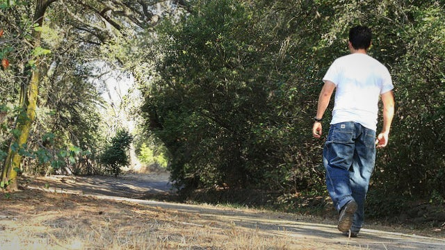 Why Walking Throughout the Day Is Just as Important as Vigorous Exercise