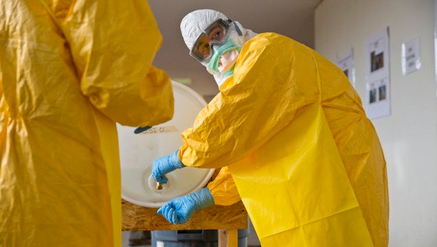 A Russian Weed Company Just Bought Ebola.com for $200,000