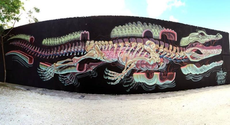 Anatomical murals take us inside man-eating sharks and cartoon rabbits